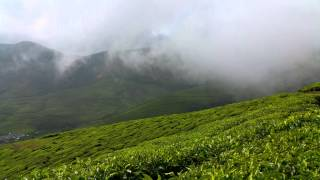 Clouds , Upper suryanelli tea estate , Munnar