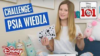 Cookie Mint w Disney Channel | Challenge: Psia wiedza | Ulica Dalmatyńczyków 101