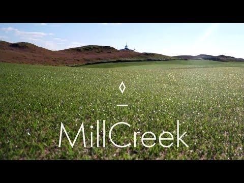 MillCreek Russia 2016