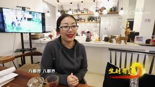 《生财有道》 20210108 浙江长兴:千年古银杏 金色八都岕| CCTV财经 - YouTube