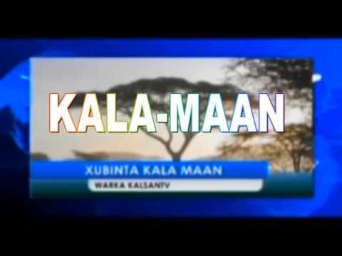 KALAMAAN KALSAN TV 19-8-2018