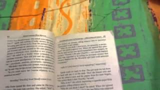 """Обзор книги """"метод чтения Ильи Франка"""""""