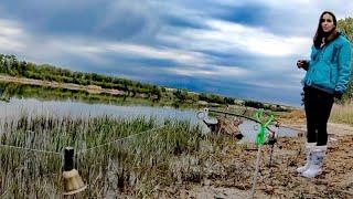 В ПОГОНЕ ЗА САЗАНОМ РЫБАЛКА С ЖЕНОЙ Ловля на жмых Рыбалка 2020