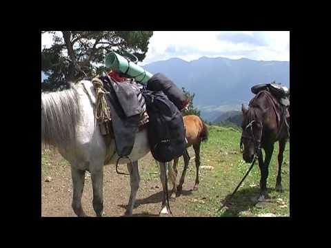 Rangers on duty in Borjomi-Kharagauli NP's wilderness