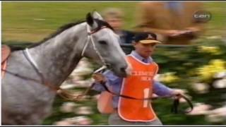 1999 TEN Network VRC Spring Carnival Emirates Stakes Day