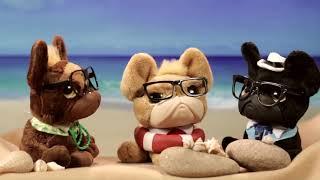 ¡Las mejores historias de juguetes, los Trendy Dogs por el mundo! EPISODIO 4