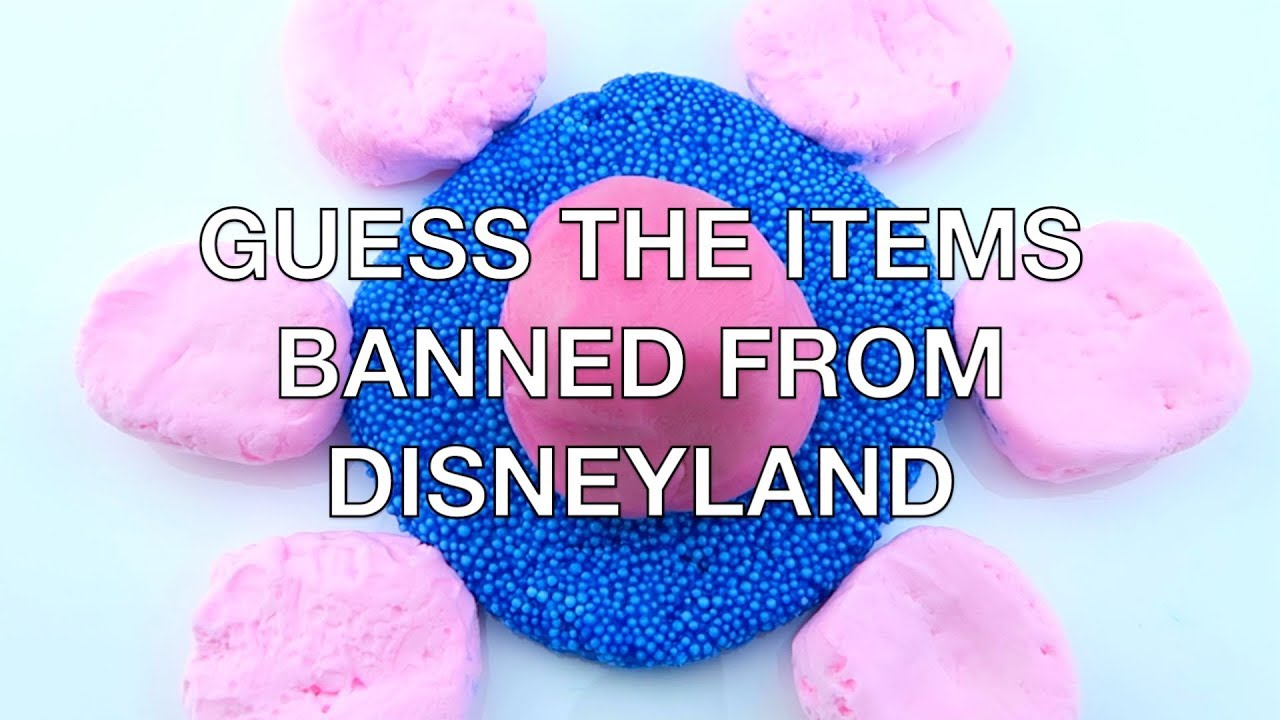 In or Out Slime point game! Guess the Items Banned From Disneyland