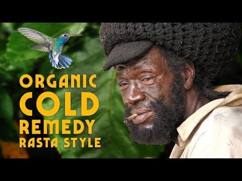 Organic Cold Remedy (Rasta Style) & Baby Hummingbirds!