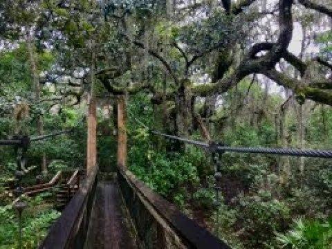 Florida Trip, Day 3: Ravine Gardens State Park, Palatka - YouTube