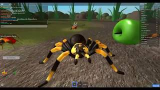 Roblox Ant Simulator | Sausage Crew| Jin JIn & Krokadil