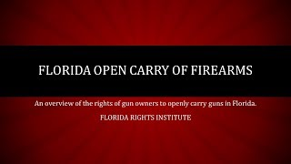 Florida Open Carry of Firearms Law Overview - Florida Rights Institute