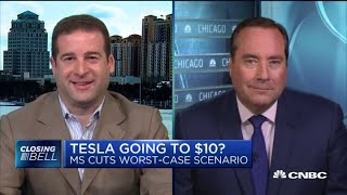 Tesla stock could go lower than $10 dollars one day, says Accipiter's Hoffman