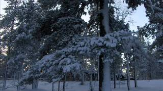 Ensi lumi