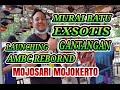 Launching Gantangan Ambc Rebornd Mojosari Mojokerto  Mp3 - Mp4 Download