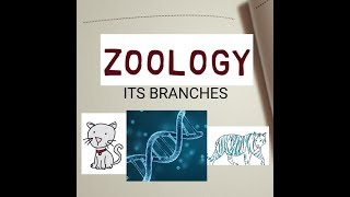 Branches Of Zoology Easy To Learn