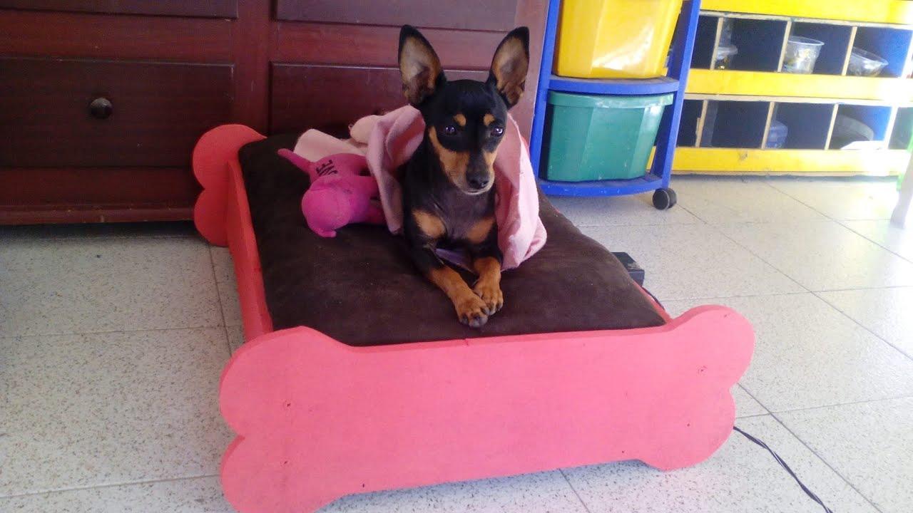 Como hacer una cama para perro en madera youtube - Hacer una cama de madera ...