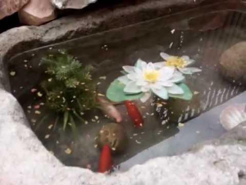 Per quest 39 anno laghetto con tunnel alla vasca zen for Vasche preformate per laghetto