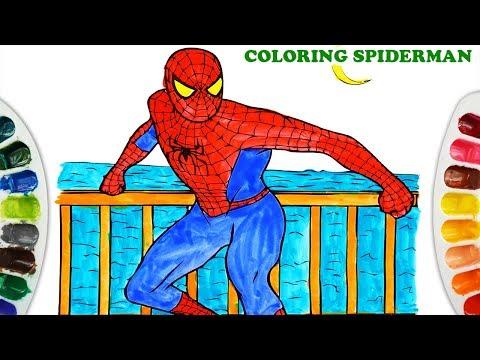 Coloring Human