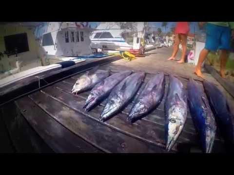 Aruba Fishing Trip-Marlin, Wahoo, And Tuna-Feb 2015