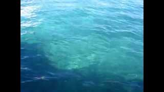 Mallorca Sea Water