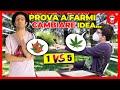 La Cannabis NON va Legalizzata - Prova a farmi Cambiare Idea - [Change my Mind]