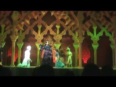 Aladdin: a Musical Spectacular DCA