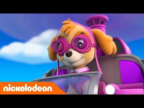 Patrulha Pata | Missão Confusão | Brasil | Nickelodeon em Português
