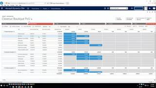 Dynamics CRM Project Services - Overview Part I thumbnail