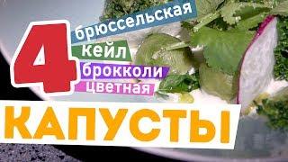 4 ВИДА КАПУСТЫ с сырным соусом 🥦🧀: брокколи, цветная капуста, брюссельская и капуста кейл (кале)