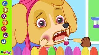 Paw Patrol Funny Story Skye Toothache ◕‿◕ KidsF