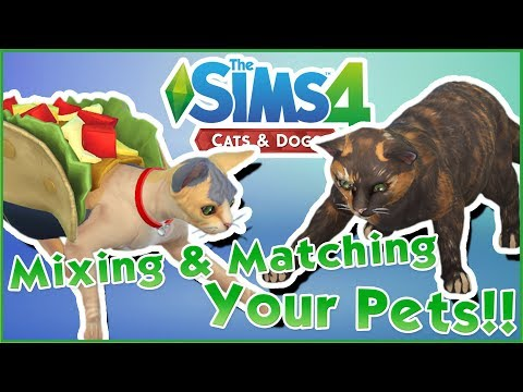 Adding Your Pets Into Our World!! 🐱🐶 Sims 4: Cats & Dogs Community Mix & Match!