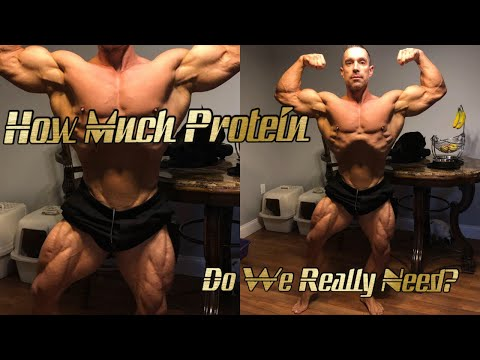 How Much Protein do we Really Need? When should we Eat it Dieting vs Bulking Part 1