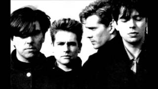 Echo & The Bunnymen... King Of Kings
