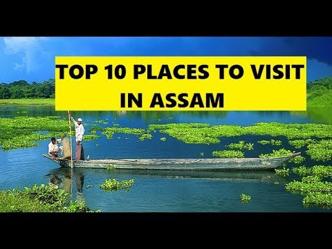 TOP 10 PLACES TO VISIT IN ASSAM   TOP 10 THINGS TO DO IN ASSAM   INDIAN BEAUTY STATION