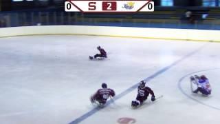 HC Sparta Praha sledge hokej  vs Kings České Budějovice - 4.1.2015