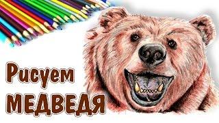 КАК НАРИСОВАТЬ МЕДВЕДЯ. How to draw a bear(КАК НАРИСОВАТЬ МЕДВЕДЯ. How to draw a bear Поэтапно цветными карандашами рисую медведя. Видео ускоренное, но т.к...., 2016-08-05T19:56:38.000Z)