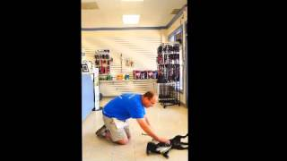 Teaching Your Dog To Roll Over With Kennelwood Trainer Matthew Bourisaw