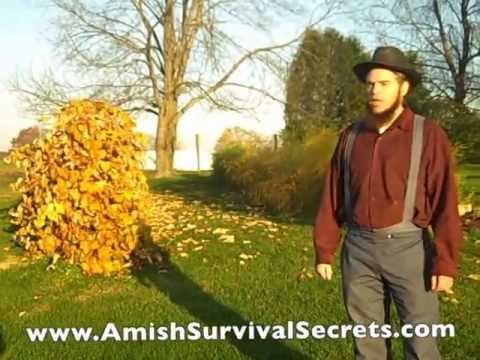 Amish Sustainable Living and Why They Plant Sustainable Gardens To Live Off