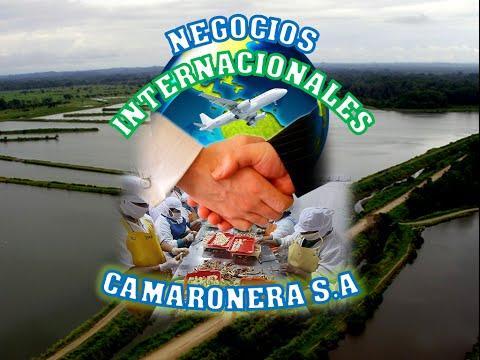 Caso Camaronera S.A.