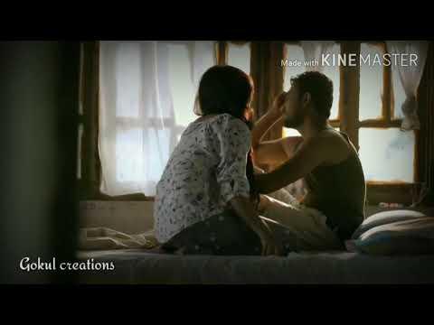 Pookal Pookum Tharunam New love status video