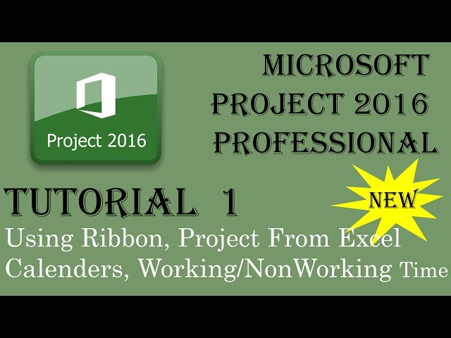 Microsoft Project 2016 Advanced Training Tutorials