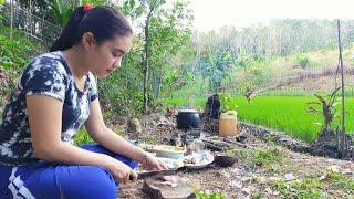 Gadis Dayak || Aktivitas sehari-hari Gadis Suku Dayak di Pondok Sawah