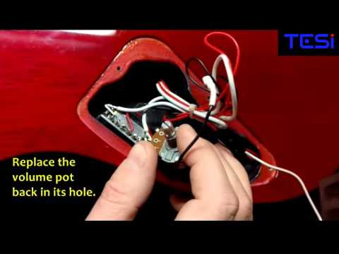 TESI SWITCH Ibanez RG Iron Label Kill Switch Installation on