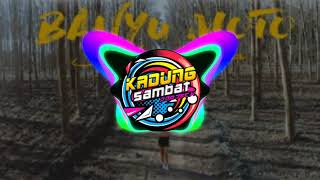 Gambar cover SAFIRA INEMA BANYU-MOTO-DJ SANTUY FULL BASS
