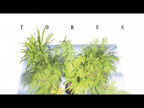 05 Torus - Chopsticks [Sonic Router Records]