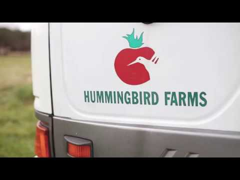 Meet the Farmer: Hummingbird Farms / Belair Produce