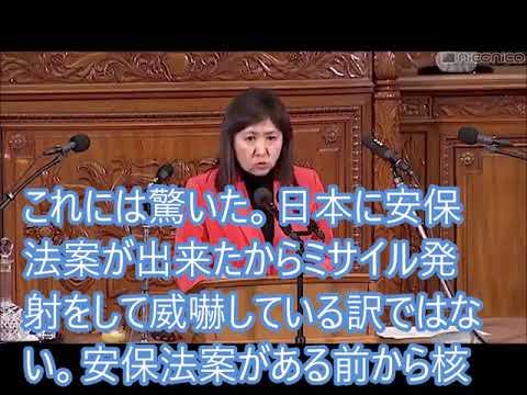 「安保法制や原子力空母と共同訓練するまでは、日本は北朝鮮のターゲットではなかったはずです!」亀井亜紀子【立憲民主党】@衆議院本会議