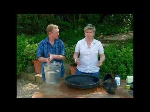 The Gardener Magazine: Making A Sundial