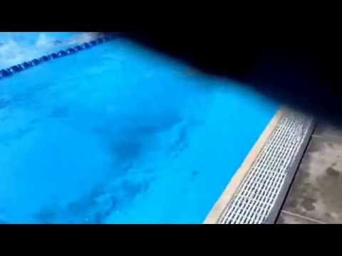 Brooke At PCB With Club Sailfish Swim