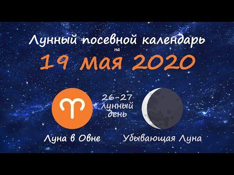 [19 мая 2020] Лунный посевной календарь огородника-садовода